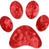 Red-Rock-K9-Paw-Prints