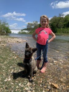 Trained German Shepherd Puppy and kid